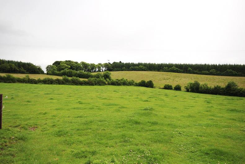 76 acres at Tiercorke, Cormeen, Moynalty, Co Meath is being guided at €875,000.