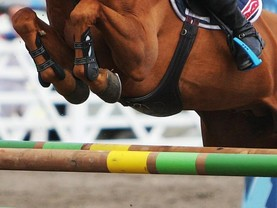SHOW JUMPING: Percy takes the win at Portmore