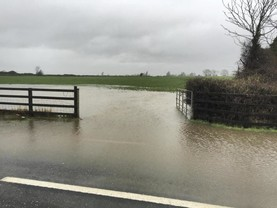 In pictures: southern deluge hits Kilkenny farms