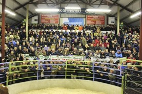 Signed Gram Slam jersey makes top price at Kanturk Mart fundraiser
