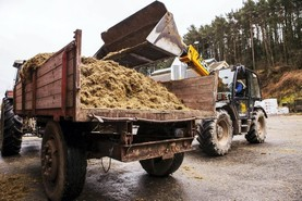 €60m/week cost to fodder crisis
