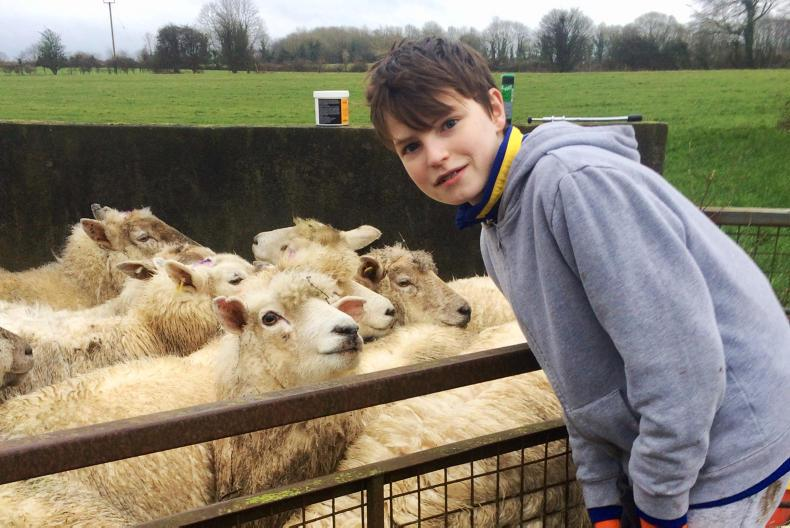 Charlie Hackett, 14, lives on an organic farm in Co Offaly.