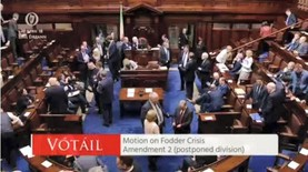Dáil passes motion to introduce meal voucher scheme
