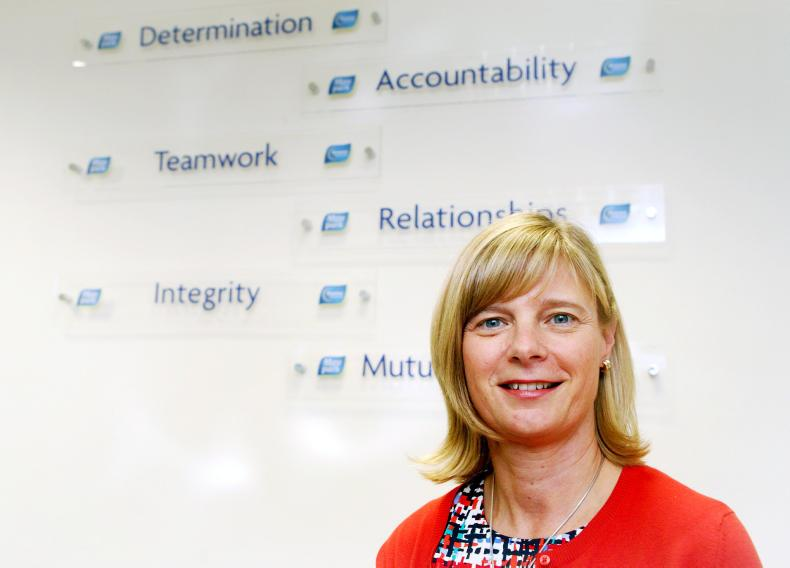 Janet McCollum, chief executive at MoyPark
