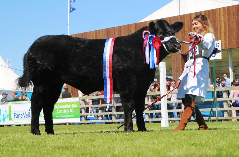 Supreme and female commercial champion Flo-Jo.